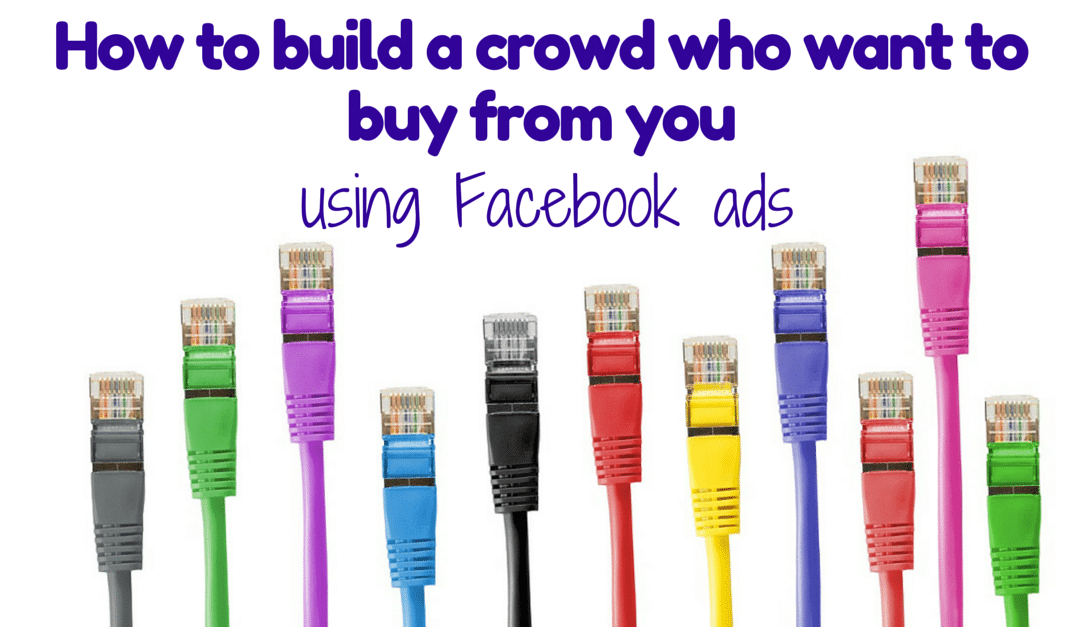 How to build a crowd who want to buy from you, using Facebook advertising