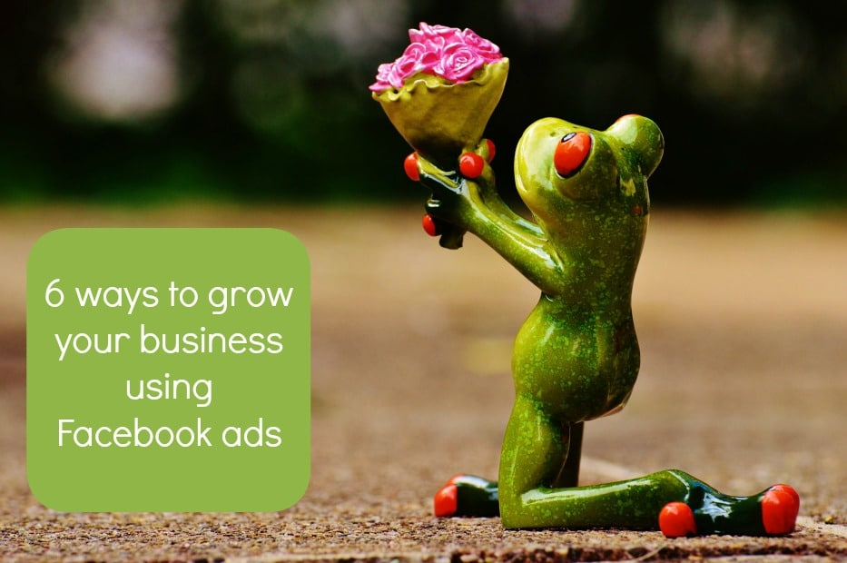 6 Ways to Grow your Business using Facebook Ads (that you might ...