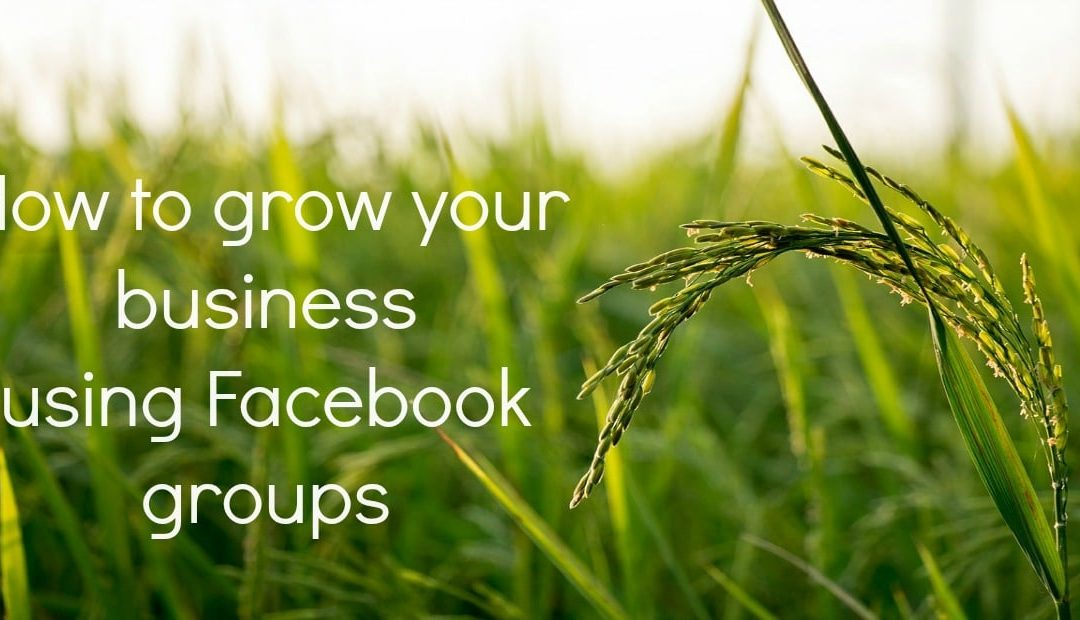 10 steps to grow your business using Facebook groups